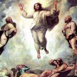 Видео-размышление в праздник Преображения Господня