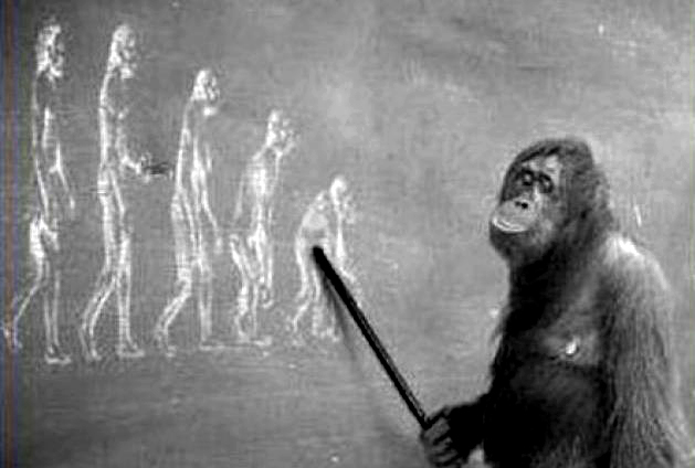 Бог и естественные науки: есть ли противоречие?