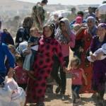 Папа обратился к участникам Всемирного конгресса по пастырскому попечению о мигрантах