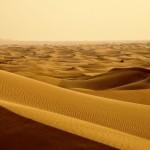 Выйти в пустыню… Проповедь на II воскресенье Адвента