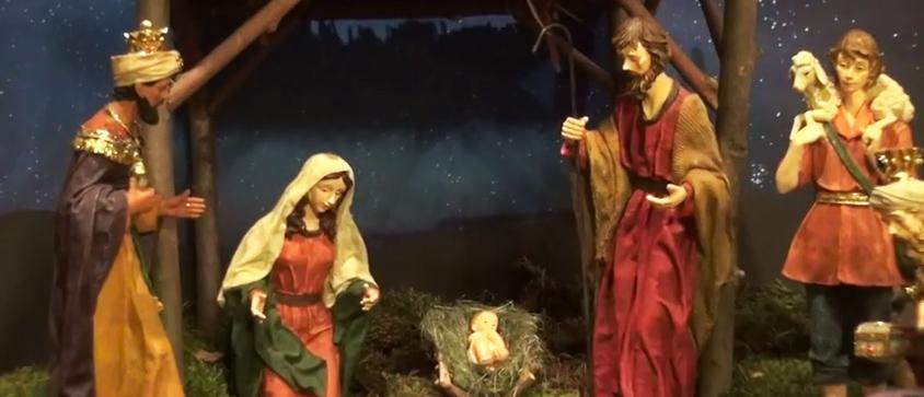Рождественские поздравления от братьев меньших капуцинов