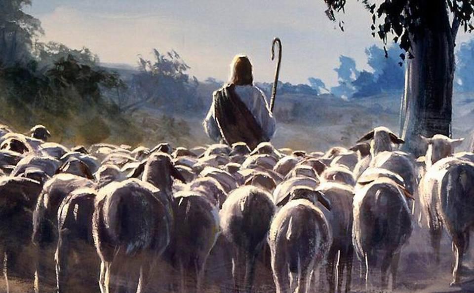 о. Марэк Ящковски: «Все мы участвуем в пастырской миссии Иисуса Христа»