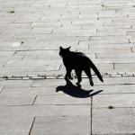 Суеверие: тяжкий грех или простительный?