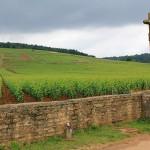 Вино монашеских орденов. Часть 2. Монашеские истоки бургундских вин