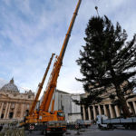 Кто в этом году украсит площадь св. Петра к Рождеству?