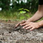 Гуманизация экологии