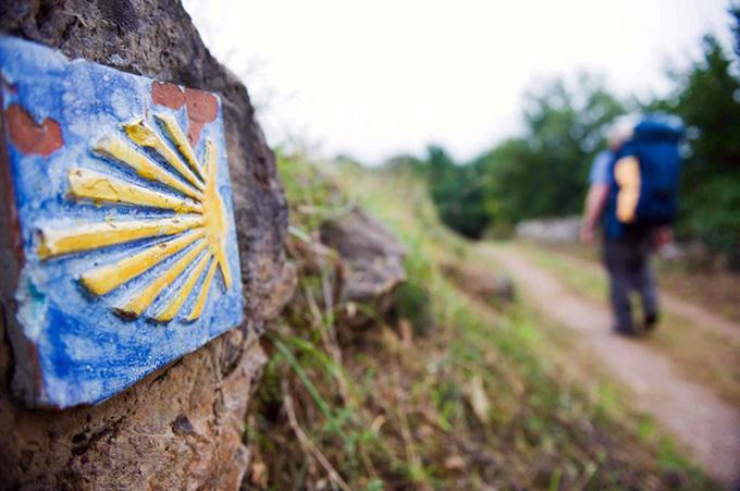 Почему ракушка стала символом паломничества?
