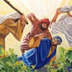 5 вопросов от Данилки: еще одна история о винограднике