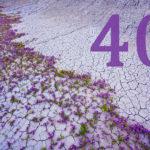 Почему пост длится 40 дней?