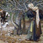 Плоды или результаты: к чему стремиться христианину?